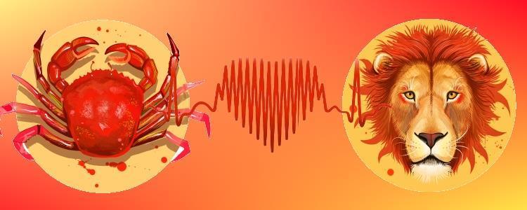 Любовь Рак и Лев