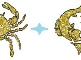 Рак и Рыбы
